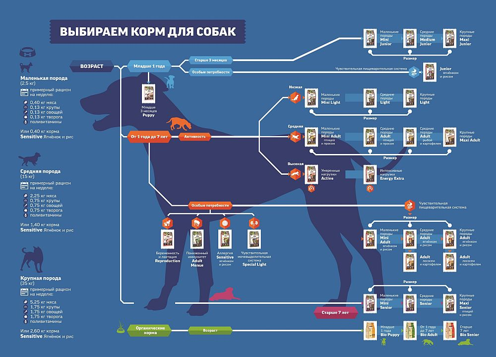Выбор кормов для собак